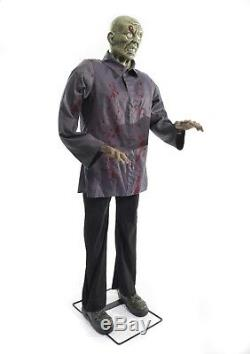 Animated Talking Zombie & Witch Couple Halloween Prop Set