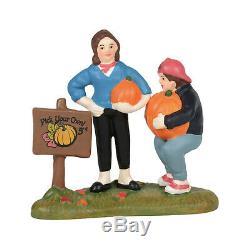 Dept. 56 SV Patty's Pumpkin Patch #6005479