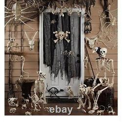 Human Body Skeleton Model 60 Tall Posable Movable Joints Realistic Decor New