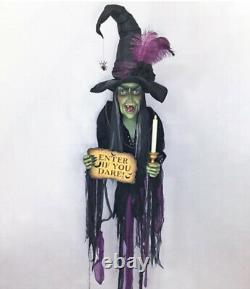 Katherine's Collection Haunted Witch Wall Piece 28-028717 NEW HALLOWEEN 2020