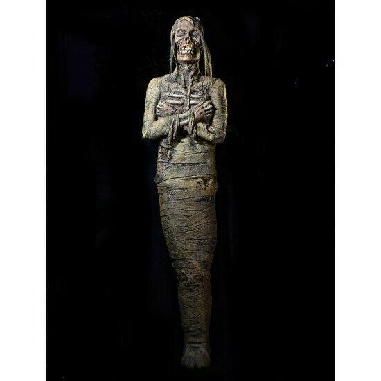 Monster Mummy Halloween Prop Distortions Unlimited