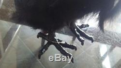 Pottery Barn Faux vulture bird large Halloween New wo tag