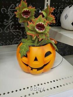 Set Lot 6 Hyde & Eek Target Halloween Plants Animated Pumpkin Blood Succulents