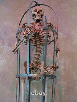 Skeleton Cage Life-Size with Aged Skeleton Halloween Prop, Human Skeletons