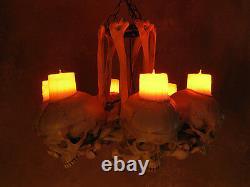 Skull Hip Bone Chandelier with Wax Candles, Halloween Prop, Human Skeletons, NEW